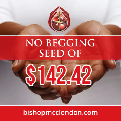 NO BEGGING SEED-02