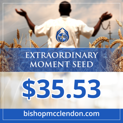 extraordinary moment seed